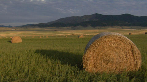 Large bales of hay sit in a large green field Stock Video Footage