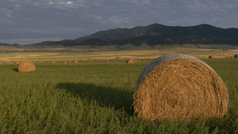 Large bales of hay sit in a large green field Footage