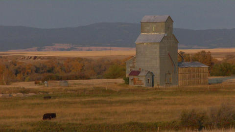 A grain silo sits on a grassy plain Footage