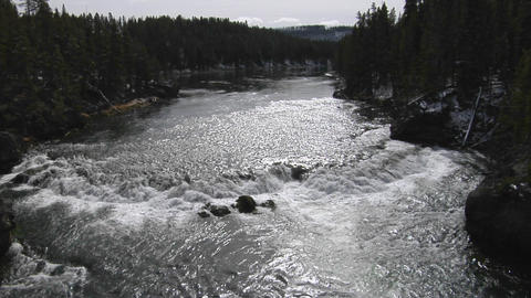 A broad river flows through Yellowstone National Park Stock Video Footage