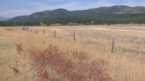 A wood and wire fence cuts through a dry grassland Stock Video Footage