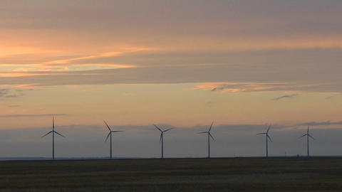 A line of windmills are silhouetted against a golden sky Stock Video Footage