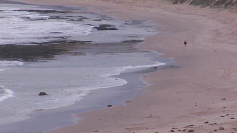 A traveler walks the oceans edge while white water laps... Stock Video Footage