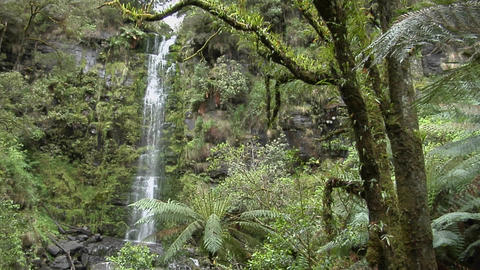 A tall waterfall spills down a lush wall in a tropical... Stock Video Footage