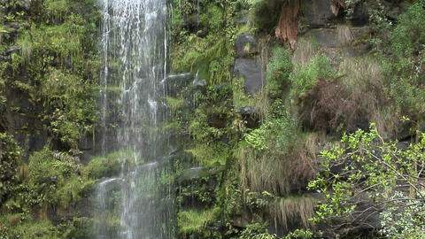 A tall waterfall spills down a cliff in a tropical jungle Stock Video Footage