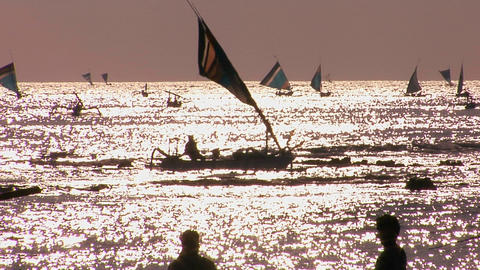 Numerous small boats sail on a shimmering sea Footage