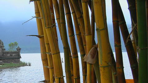 A bamboo forest reveals a Asian temple on lake Bratan,... Stock Video Footage