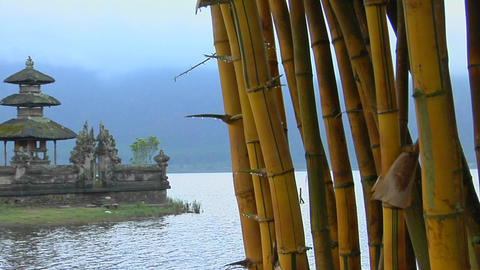 A bamboo forest reveals a Asian temple on lake Bratan, Bali, Indonesia Footage