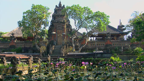 Gardens surround the Lotus Temple in Bali Stock Video Footage