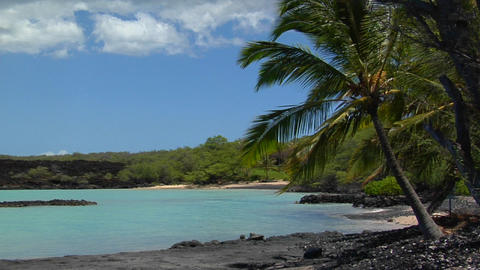 A black sand beach and palms line a tropical island Stock Video Footage