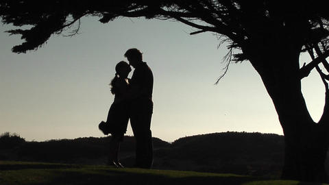 A silhouette of man and woman embrace under a tree Footage