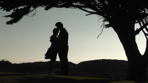 A silhouette of man and woman embrace under a tree Stock Video Footage