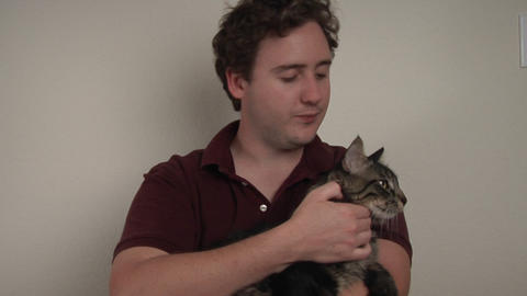 A man holds and pets a striped cat Stock Video Footage