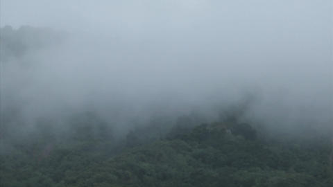 A thick blanket of fog rolls over a mountain hillside Footage