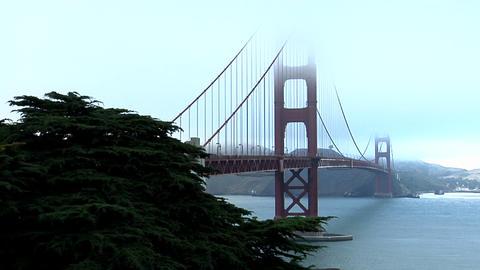 The Golden Gate Bridge graces the San Francisco bay skyline Stock Video Footage