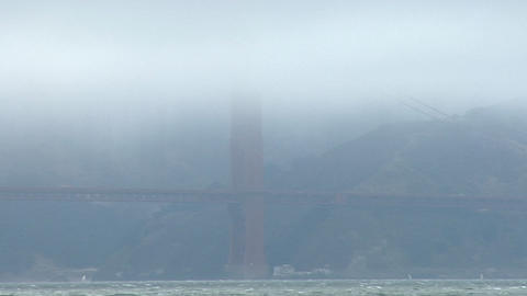 A seagull surveys the Golden Gate Bridge obscured by fog... Stock Video Footage