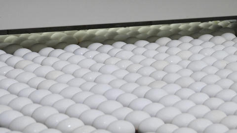 White eggs move along on a factory conveyor belt Stock Video Footage