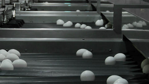 White eggs move through chutes on a factory conveyor belt Stock Video Footage