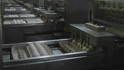 Automated machinery processes cartons of eggs in a factory Stock Video Footage