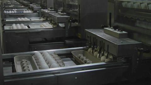 Automated machinery processes cartons of eggs in a factory Footage