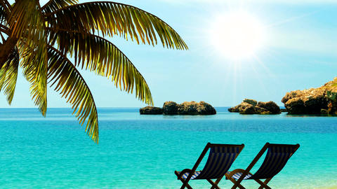 Relax on the beach under palm trees in the tropics Travel background Animation