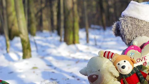Big teddy bear with christmas toys left panorama Footage