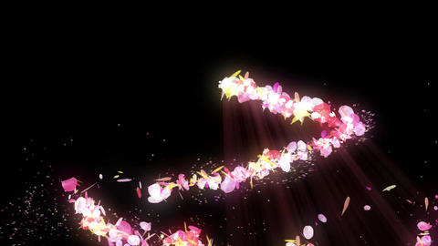 Spin of colorful petals,Particle CG Animation,Black Background CG動画