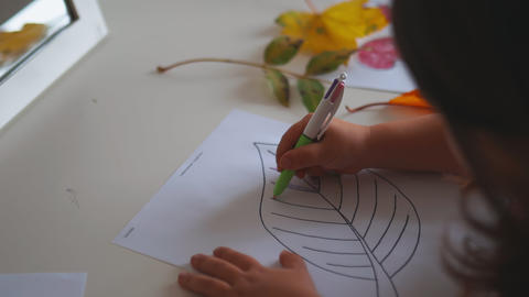 Little girl coloring a big leaf image on a paper sheet with a pen Live Action