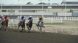 Northlands Horses 4 june 14 15 Footage
