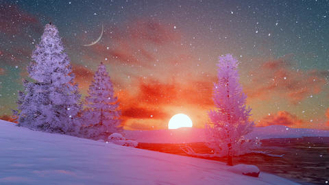Scenic sunset over snowy winter firs Animation