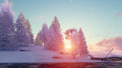 Snowy winter firs and frozen river at scenic sunset Animation