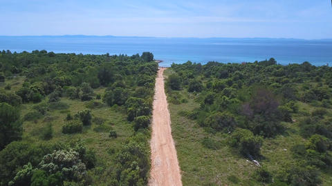 Aerial - Flying above sandy road leading to secluded beach surrounded with pines Archivo