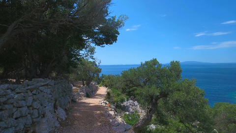 Aerial - Flying above the path among olive trees leading to the sea Footage