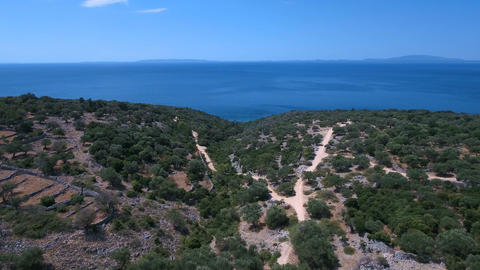 Aerial - Flying high above overgrown hills near the sea with old olive trees Footage