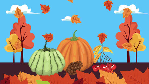 Hello autumn animation with leafs and fruits frame 4k animated 4 Live Action