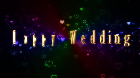 Wedding 161202 60 Animation
