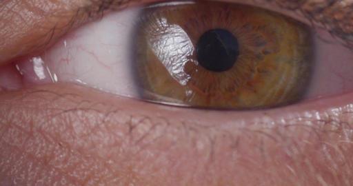 Eye Opening Blinking Macro Close Up Slow Motion 200fps 4K Footage