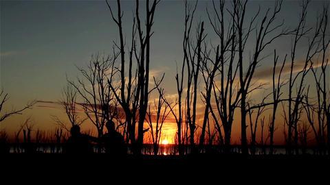 Sunset On Lake Footage