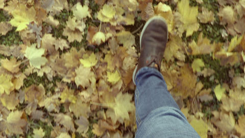 Man walking at autumn park on yellow leaves steps of male feet close up Footage