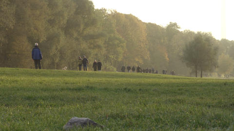 Grass field. People walking on the background next to the forest fixed view Footage