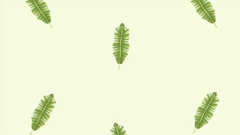 Tropical exotics leafs ecology animation pattern background 4k 5 Live Action