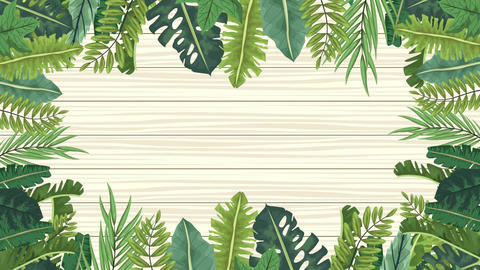 Tropical exotics leafs ecology animation pattern background 4k 19 Live Action