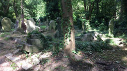 Highgate Cemetery London UK Footage