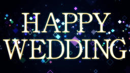Wedding 161202 80 1 Animation