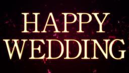 Wedding 161202 101 1 1 Animation