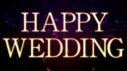 Wedding 161202 104 1 1 Animation