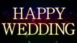 Wedding 161202 107 1 1 Animation