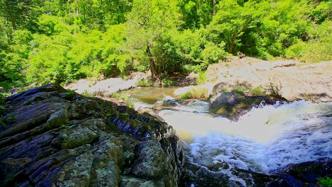 Small Mountain River among Rocks against Green Tropical Plants Footage