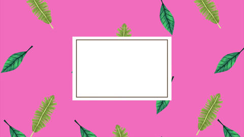 Tropical exotics leafs ecology animation pattern background 4k 13 Live Action