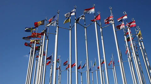 European flags on flagpoles developed in the wind Image